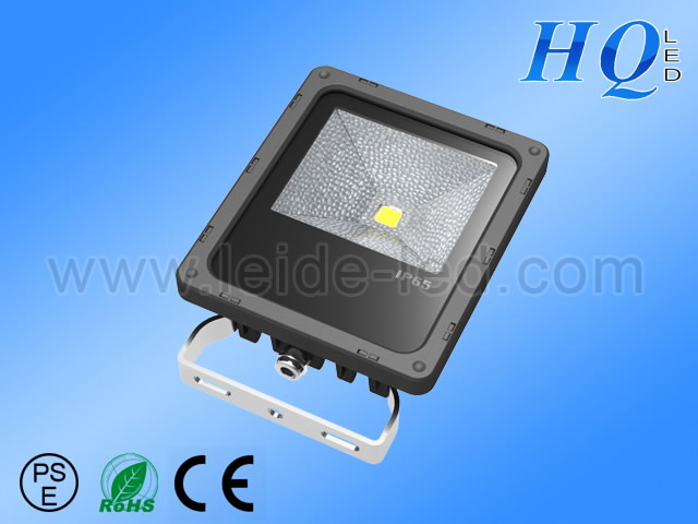 2013  10W LED Flood light